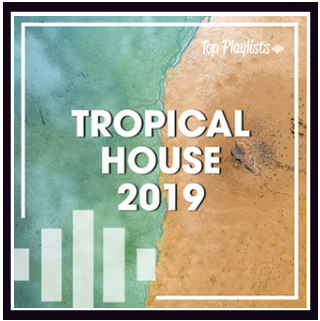 Tropical House Carl Clarks
