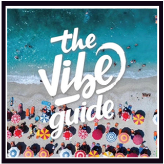 The Vibe Guide Carl Clarks